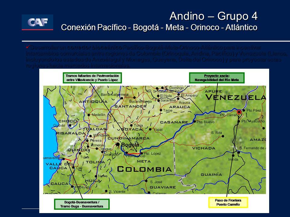 Andino – Grupo 4 Conexión Pacífico - Bogotá - Meta - Orinoco - Atlántico Desarrollar un corredor bioceánico Pacífico-Bogotá-Meta-Orinoco-Atlántico para incentivar intercambios comerciales entre regiones de Colombia (Orinoquia, Andina, Pacífico) y Venezuela (Llanos, incluyendo los estados de Anzoátegui y Monagas, Guayana, Delta del Orinoco) y para proyectar estas regiones hacia mercados internacionales.