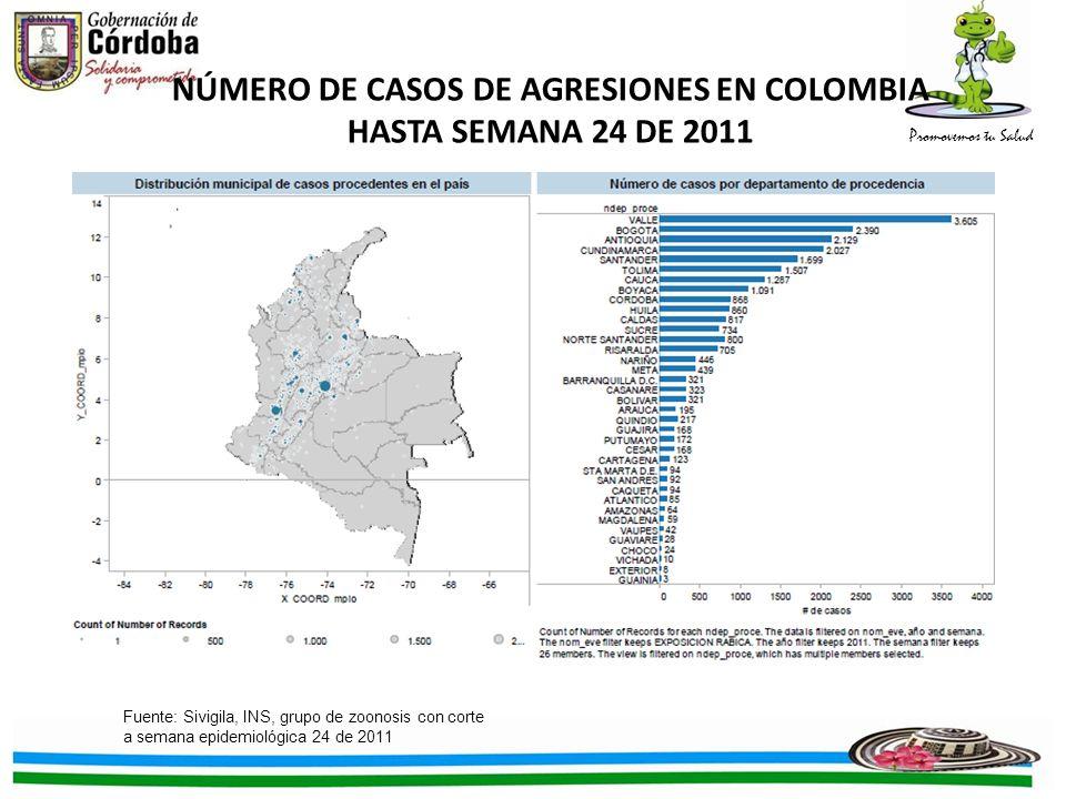 Promovemos tu Salud NÚMERO DE CASOS DE AGRESIONES EN COLOMBIA HASTA SEMANA 24 DE 2011 Fuente: Sivigila, INS, grupo de zoonosis con corte a semana epid