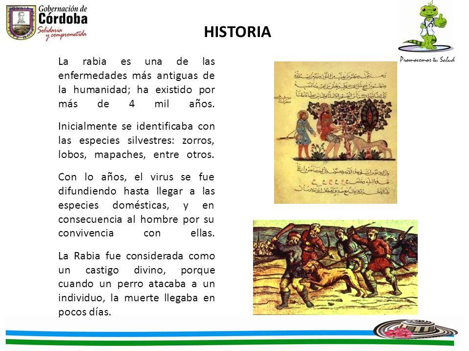 Promovemos tu Salud La rabia es una de las enfermedades más antiguas de la humanidad; ha existido por más de 4 mil años. Inicialmente se identificaba