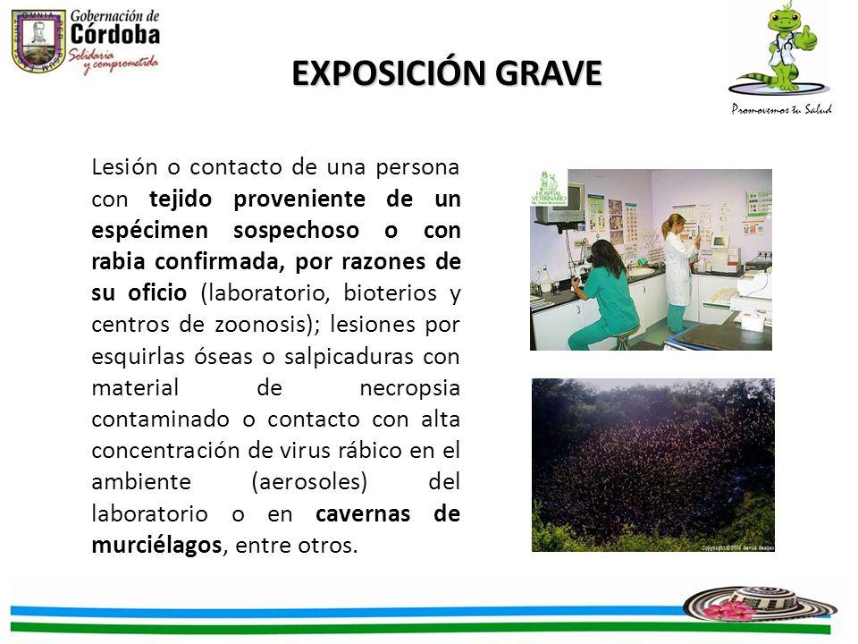 Promovemos tu Salud Lesión o contacto de una persona con tejido proveniente de un espécimen sospechoso o con rabia confirmada, por razones de su ofici
