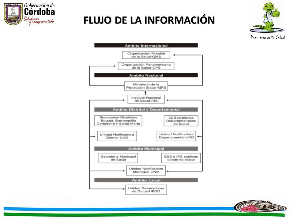 Promovemos tu Salud FLUJO DE LA INFORMACIÓN