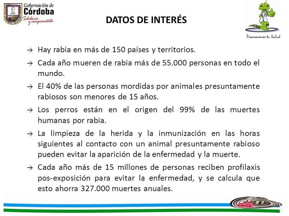 Promovemos tu Salud DATOS DE INTERÉS Hay rabia en más de 150 países y territorios.