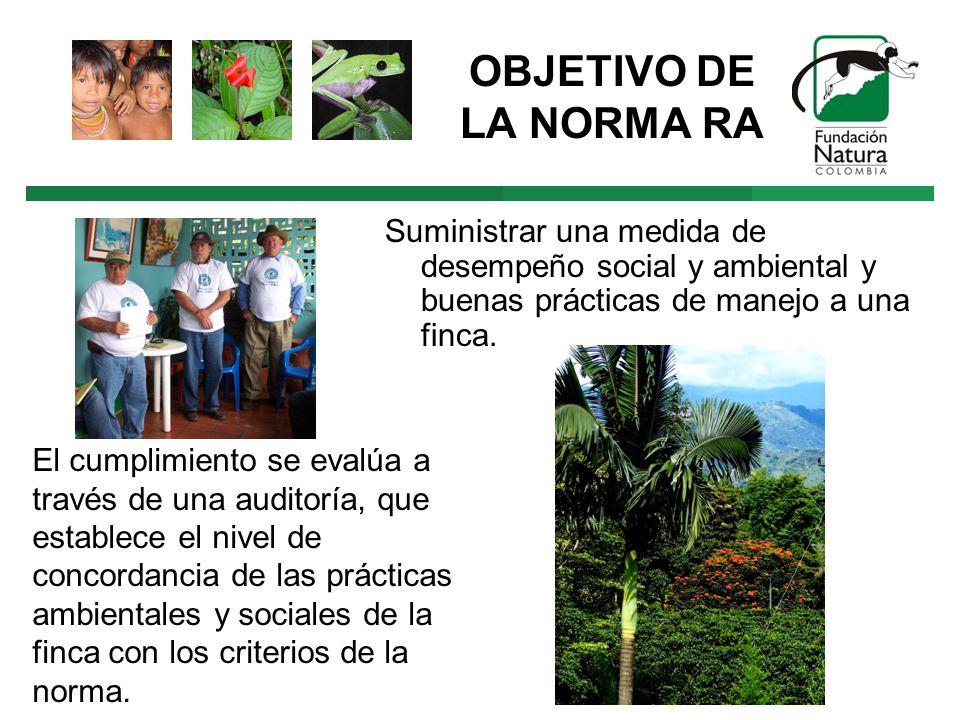 OBJETIVO DE LA NORMA RA Suministrar una medida de desempeño social y ambiental y buenas prácticas de manejo a una finca.
