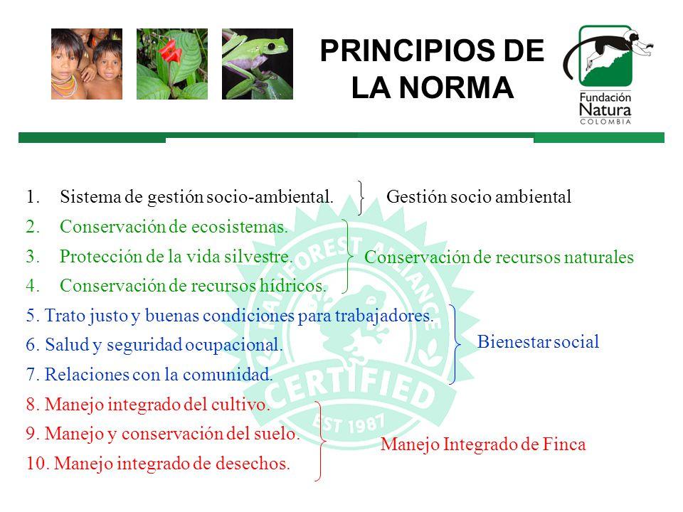 1.Sistema de gestión socio-ambiental. 2.Conservación de ecosistemas.