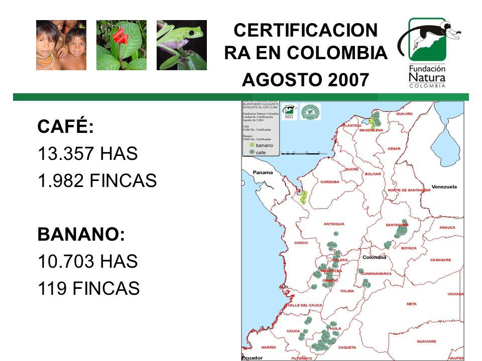 CERTIFICACION RA EN COLOMBIA AGOSTO 2007 CAFÉ: 13.357 HAS 1.982 FINCAS BANANO: 10.703 HAS 119 FINCAS