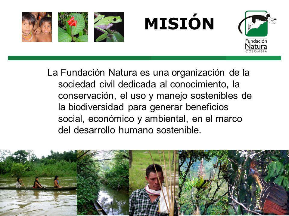 MISIÓN La Fundación Natura es una organización de la sociedad civil dedicada al conocimiento, la conservación, el uso y manejo sostenibles de la biodiversidad para generar beneficios social, económico y ambiental, en el marco del desarrollo humano sostenible.
