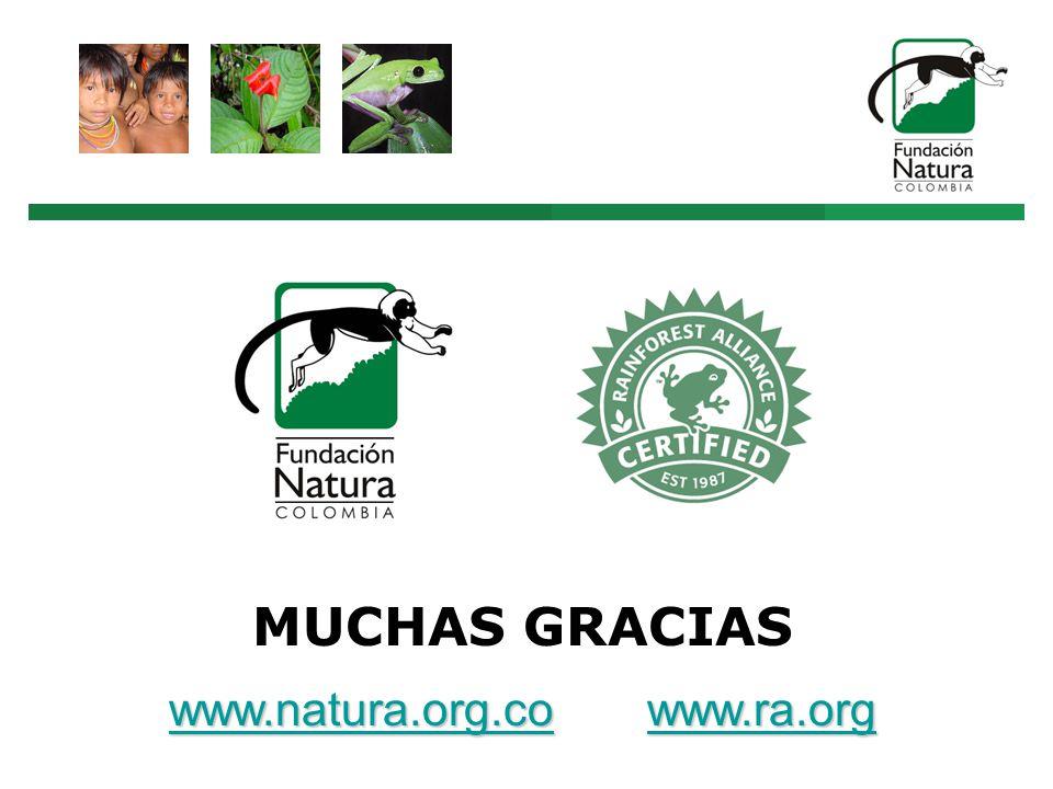 MUCHAS GRACIAS www.natura.org.cowww.natura.org.co www.ra.org www.ra.org www.natura.org.cowww.ra.org