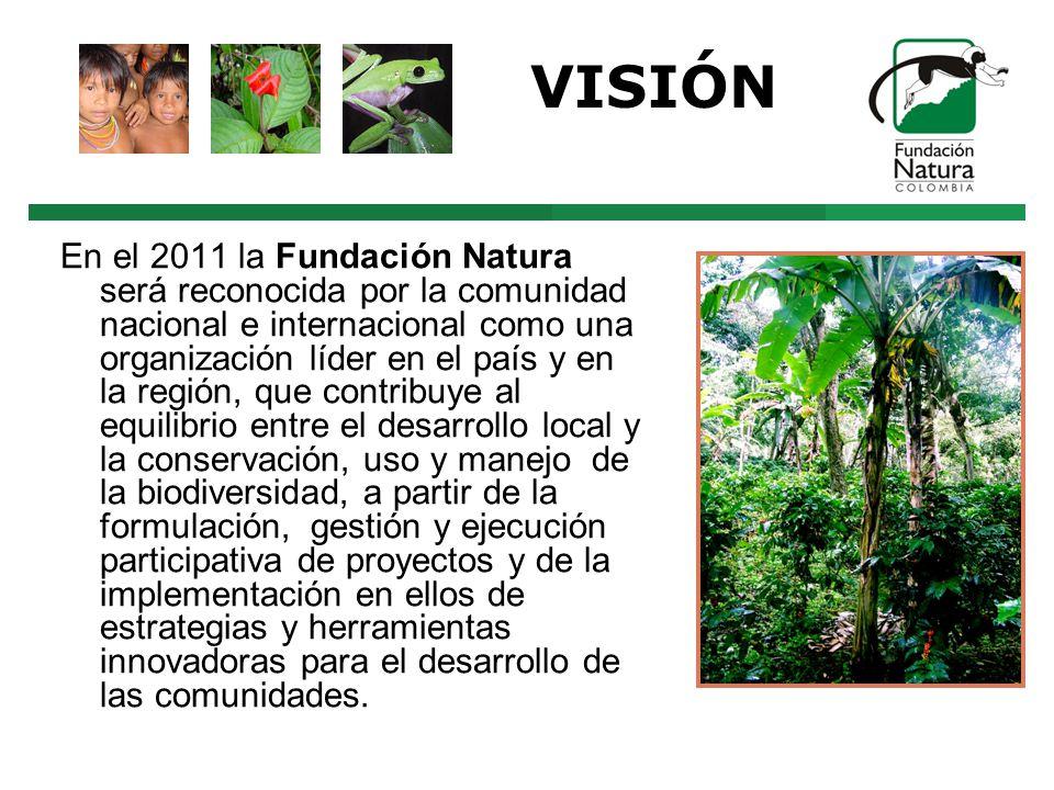 VISIÓN En el 2011 la Fundación Natura será reconocida por la comunidad nacional e internacional como una organización líder en el país y en la región, que contribuye al equilibrio entre el desarrollo local y la conservación, uso y manejo de la biodiversidad, a partir de la formulación, gestión y ejecución participativa de proyectos y de la implementación en ellos de estrategias y herramientas innovadoras para el desarrollo de las comunidades.