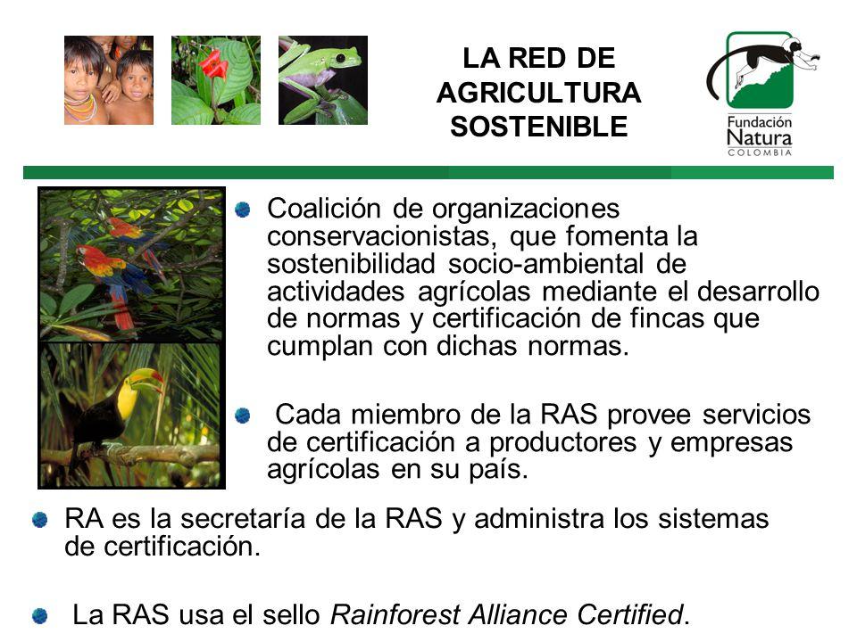 RA es la secretaría de la RAS y administra los sistemas de certificación.