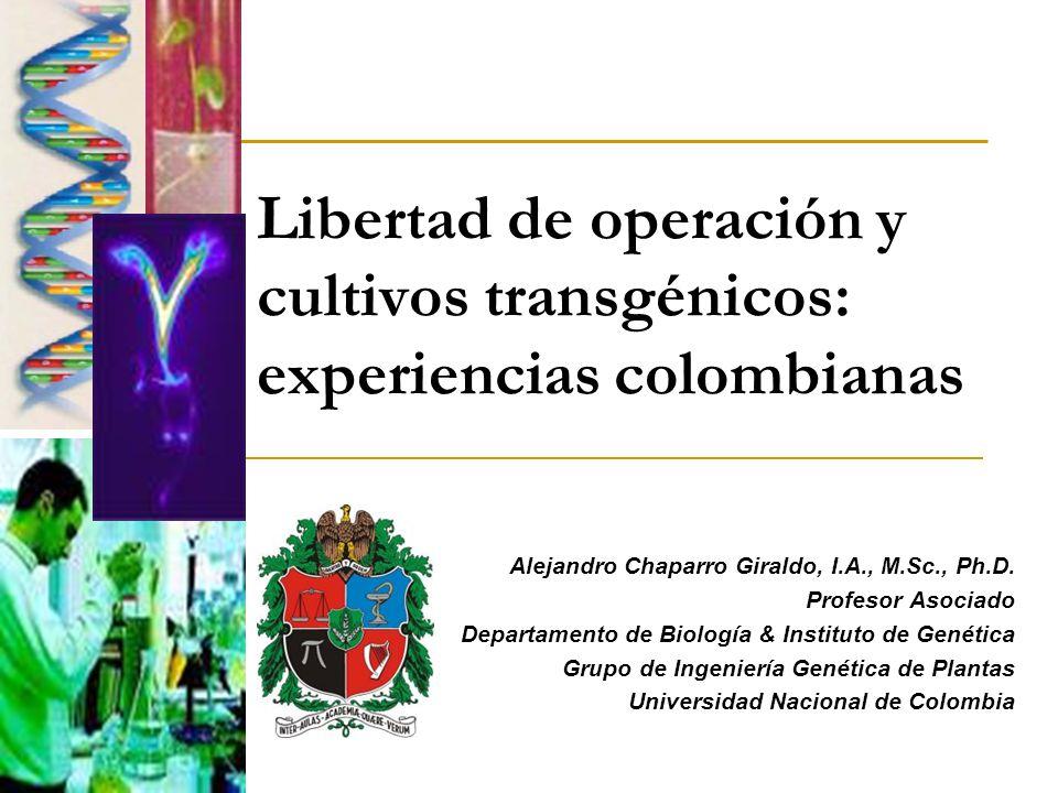 Libertad de operación y cultivos transgénicos: experiencias colombianas Alejandro Chaparro Giraldo, I.A., M.Sc., Ph.D. Profesor Asociado Departamento