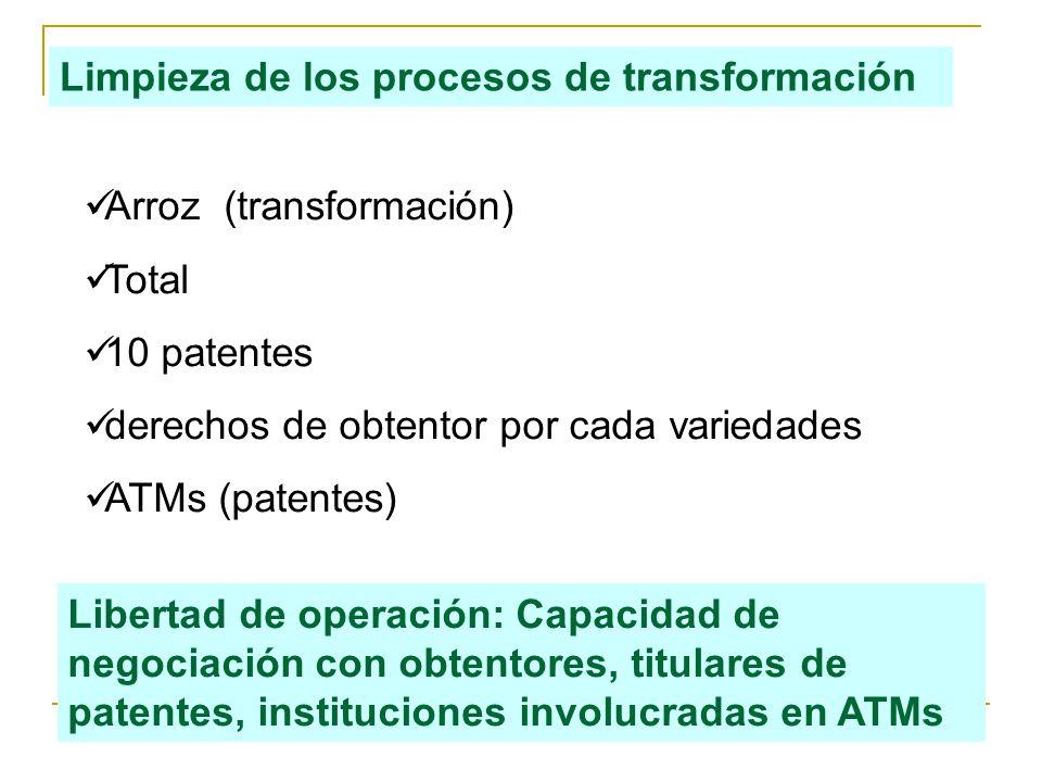 Arroz (transformación) Total 10 patentes derechos de obtentor por cada variedades ATMs (patentes) Limpieza de los procesos de transformación Libertad de operación: Capacidad de negociación con obtentores, titulares de patentes, instituciones involucradas en ATMs