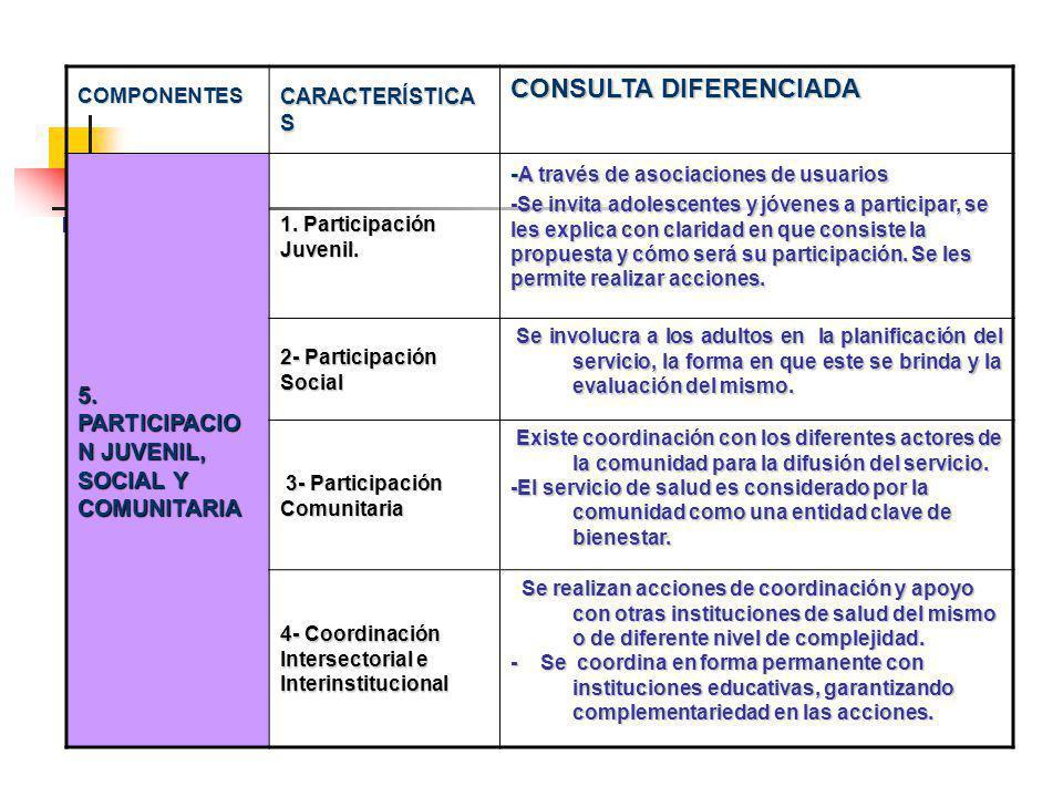 COMPONENTES CARACTERÍSTICA S CONSULTA DIFERENCIADA 5.