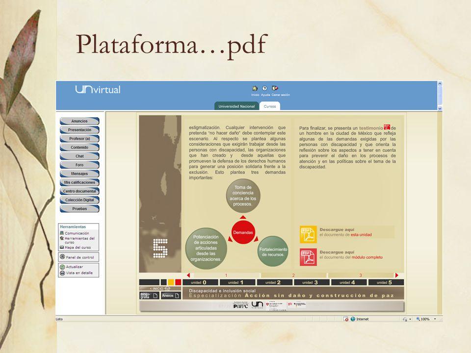 Plataforma…pdf