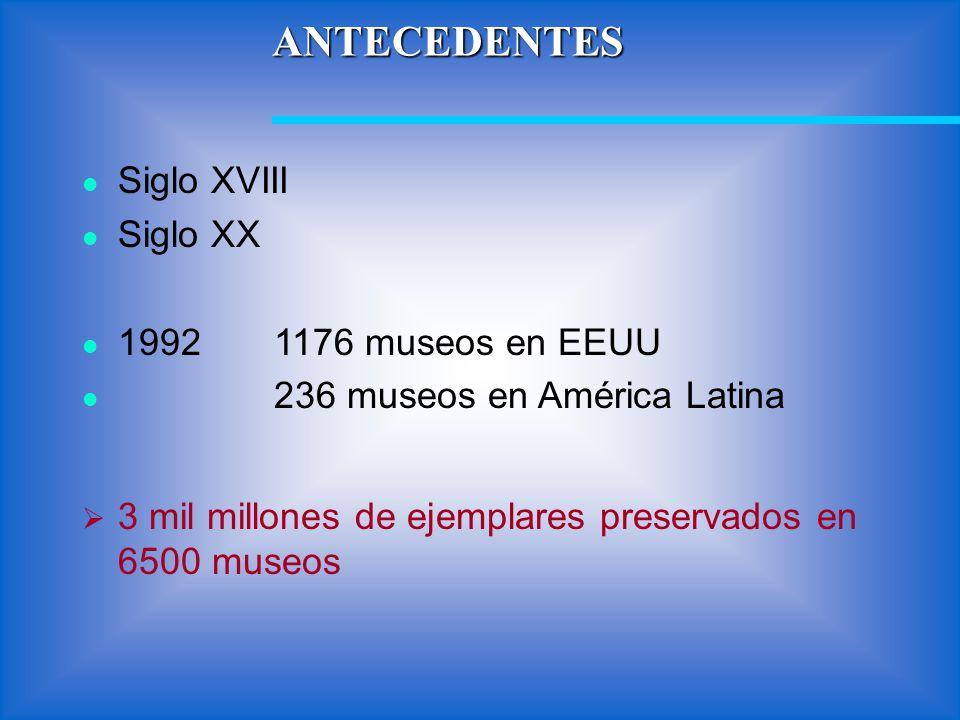 ANTECEDENTES Siglo XVIII Siglo XX 19921176 museos en EEUU 236 museos en América Latina 3 mil millones de ejemplares preservados en 6500 museos