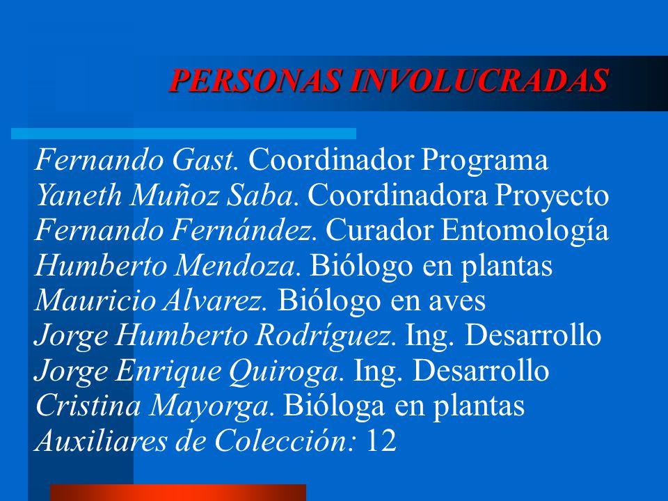 PERSONAS INVOLUCRADAS Fernando Gast. Coordinador Programa Yaneth Muñoz Saba. Coordinadora Proyecto Fernando Fernández. Curador Entomología Humberto Me