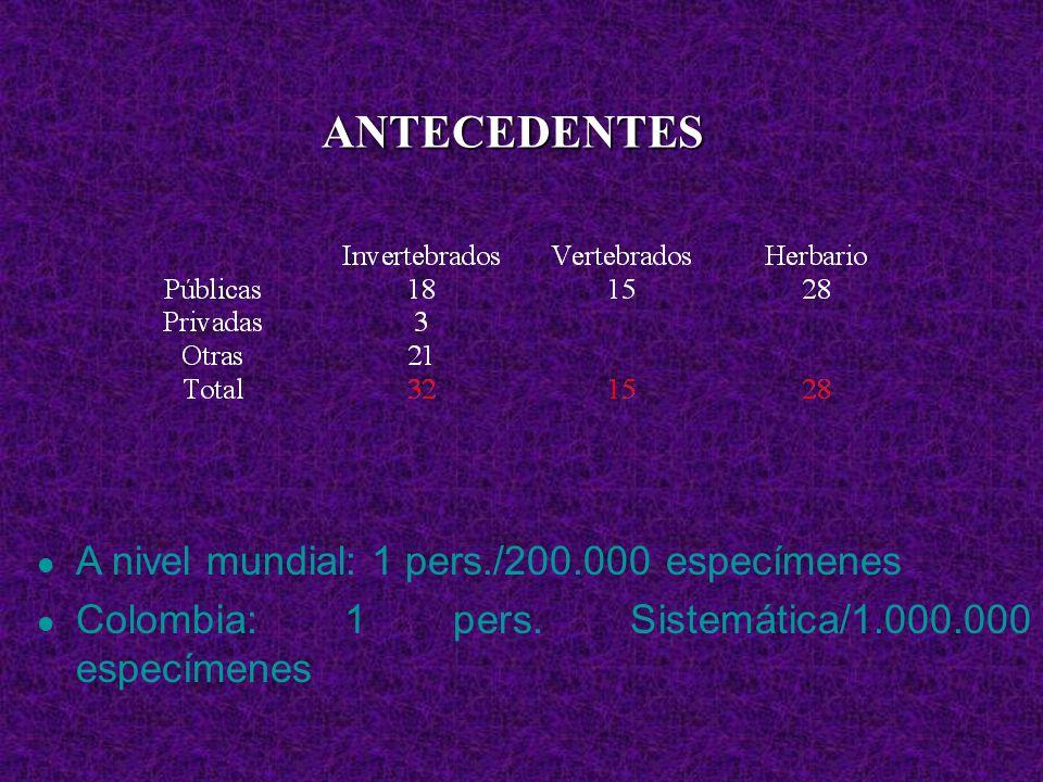 ANTECEDENTES A nivel mundial: 1 pers./200.000 especímenes Colombia: 1 pers. Sistemática/1.000.000 especímenes