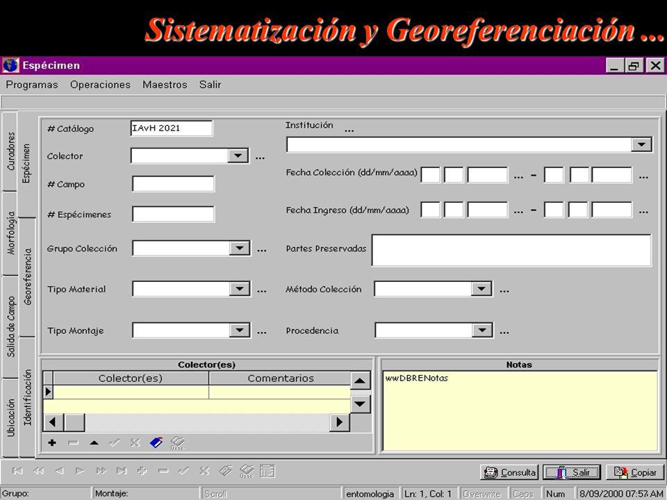 Sistematización y Georeferenciación...