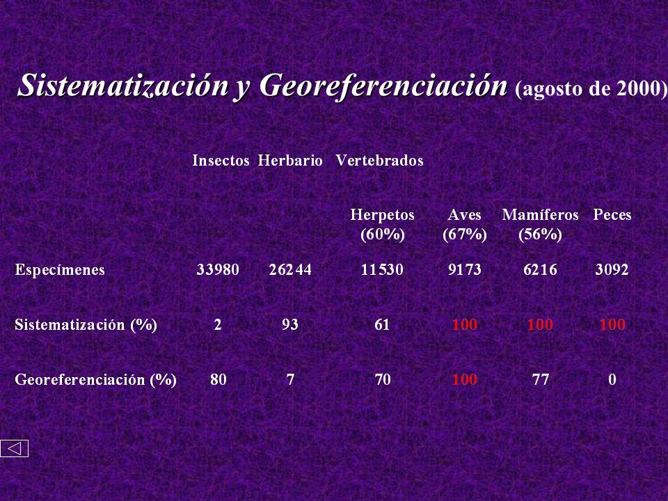 Sistematización y Georeferenciación Sistematización y Georeferenciación (agosto de 2000)