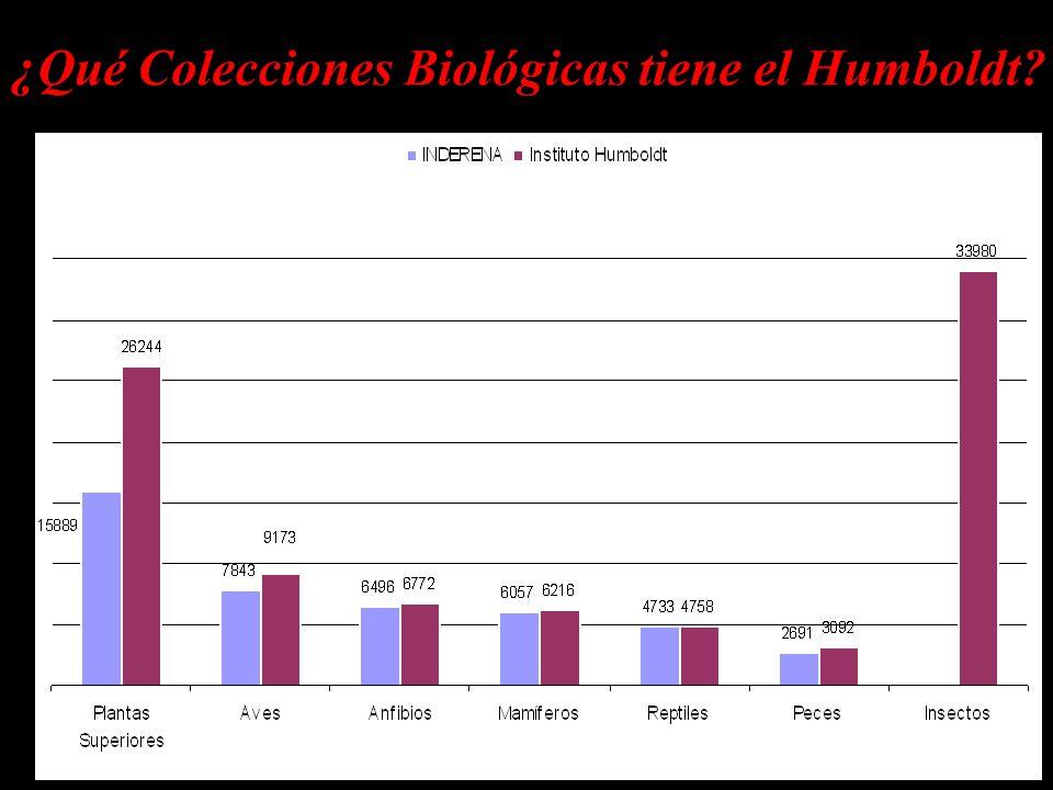 ¿Qué Colecciones Biológicas tiene el Humboldt?