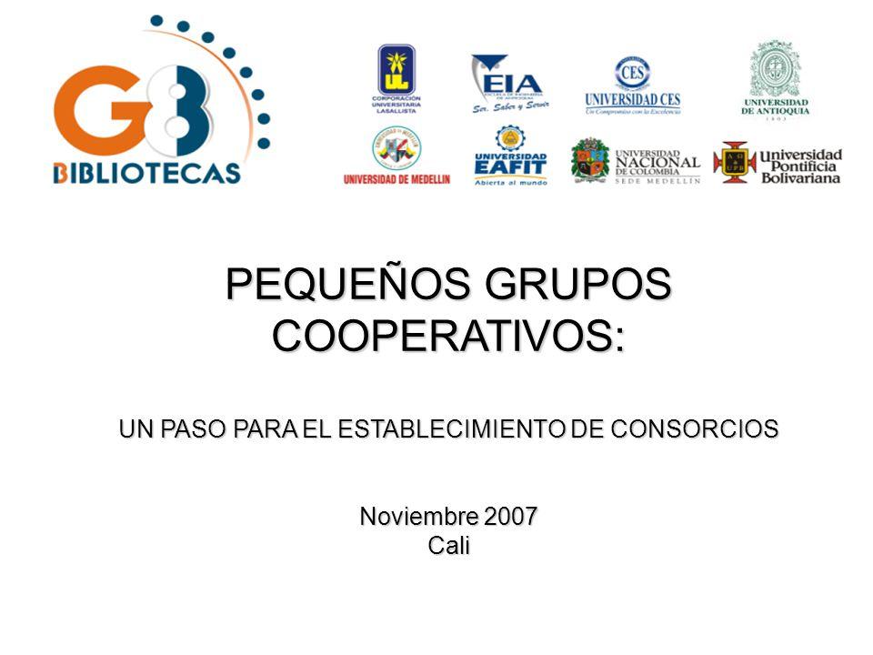 PEQUEÑOS GRUPOS COOPERATIVOS: UN PASO PARA EL ESTABLECIMIENTO DE CONSORCIOS Noviembre 2007 Cali