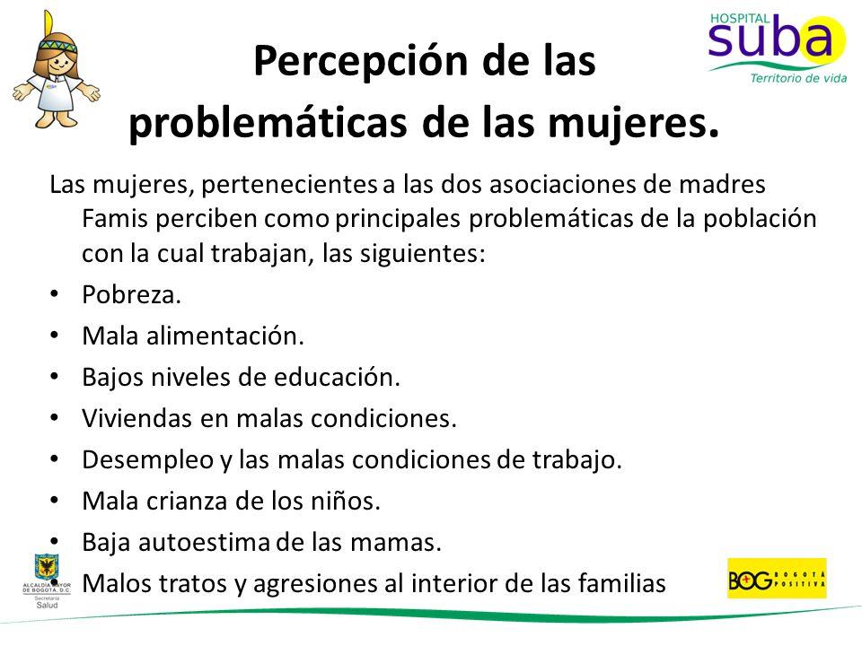 Percepción de las problemáticas de las mujeres. Las mujeres, pertenecientes a las dos asociaciones de madres Famis perciben como principales problemát