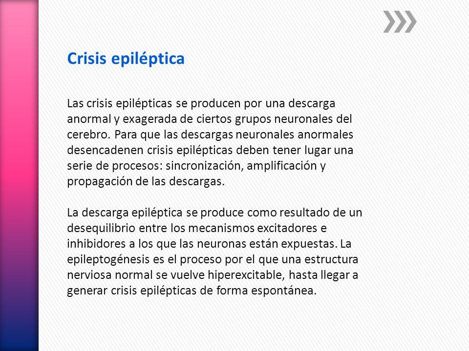 Crisis epiléptica Las crisis epilépticas se producen por una descarga anormal y exagerada de ciertos grupos neuronales del cerebro. Para que las desca
