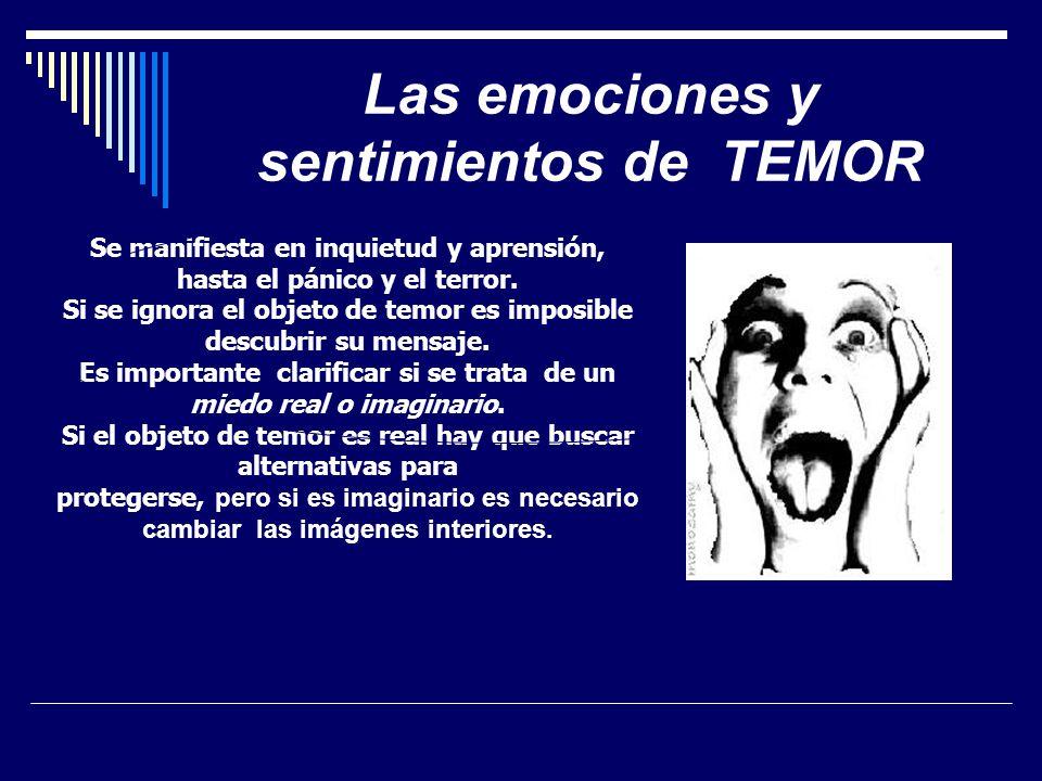 Las emociones y sentimientos de TEMOR Se manifiesta en inquietud y aprensión, hasta el pánico y el terror. Si se ignora el objeto de temor es imposibl