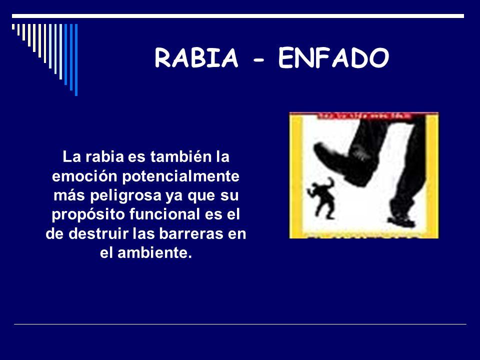 RABIA - ENFADO La rabia es también la emoción potencialmente más peligrosa ya que su propósito funcional es el de destruir las barreras en el ambiente