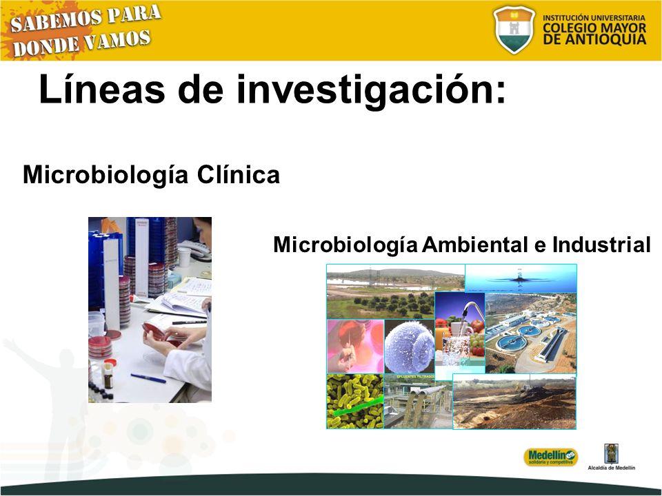 Líneas de investigación: Microbiología Ambiental e Industrial Microbiología Clínica