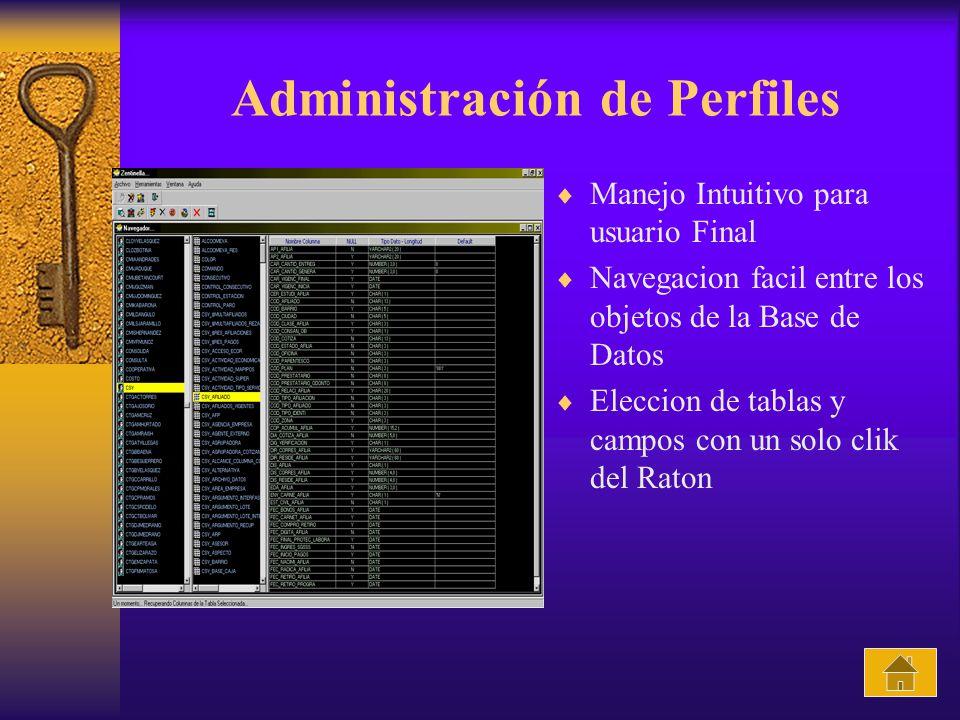 Administración de Perfiles Manejo Intuitivo para usuario Final Navegacion facil entre los objetos de la Base de Datos Eleccion de tablas y campos con un solo clik del Raton