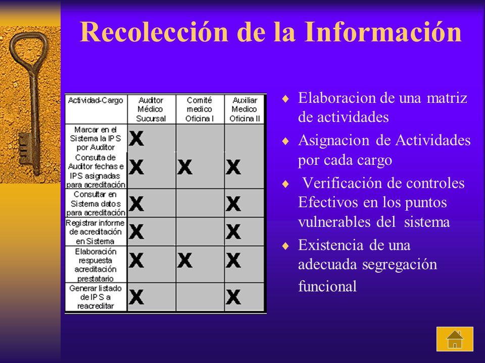 Recolección de la Información Elaboracion de una matriz de actividades Asignacion de Actividades por cada cargo Verificación de controles Efectivos en los puntos vulnerables del sistema Existencia de una adecuada segregación funcional