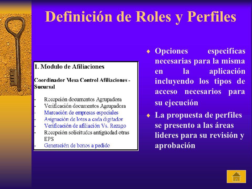 Definición de Roles y Perfiles Opciones especificas necesarias para la misma en la aplicación incluyendo los tipos de acceso necesarios para su ejecución La propuesta de perfiles se presento a las áreas lideres para su revisión y aprobación