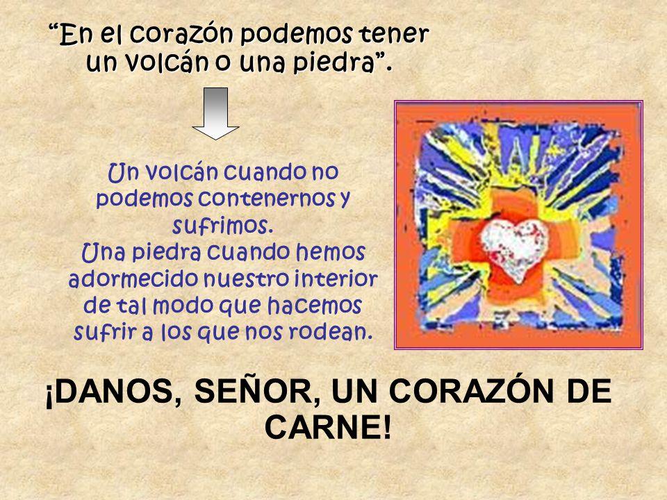 En el corazón podemos tener un volcán o una piedra. Un volcán cuando no podemos contenernos y sufrimos. Una piedra cuando hemos adormecido nuestro int