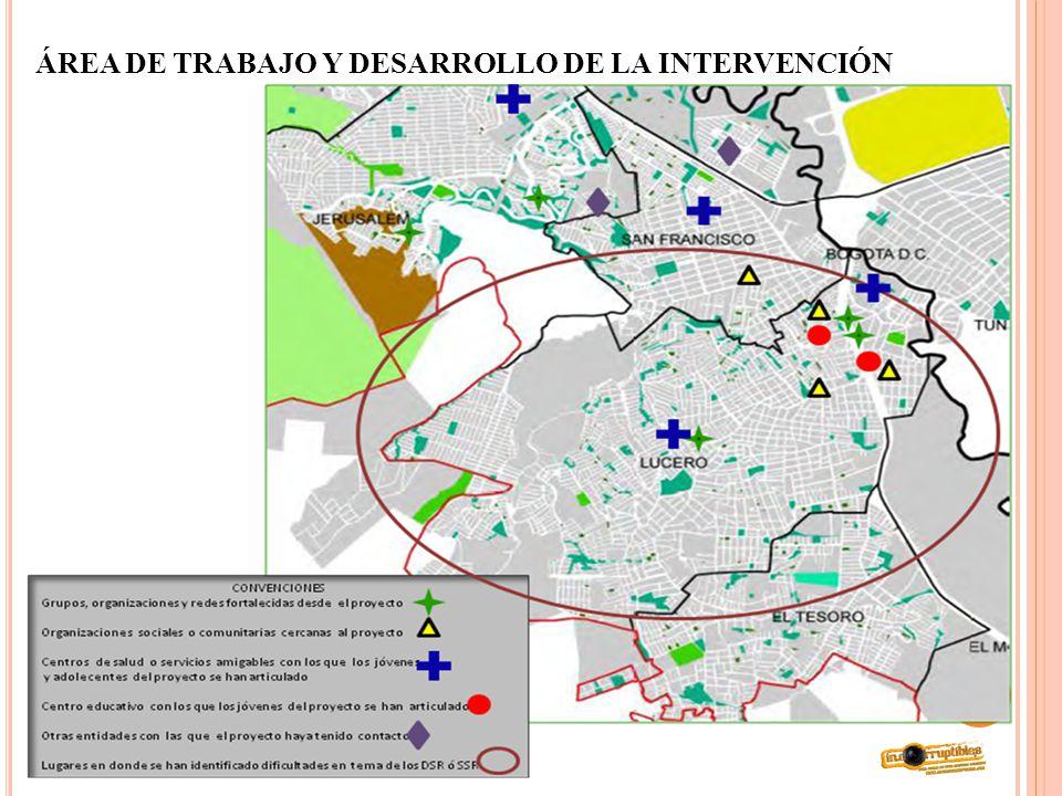 ÁREA DE TRABAJO Y DESARROLLO DE LA INTERVENCIÓN