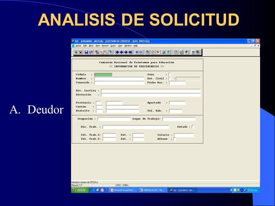 B. Fiador ANALISIS DE SOLICITUD
