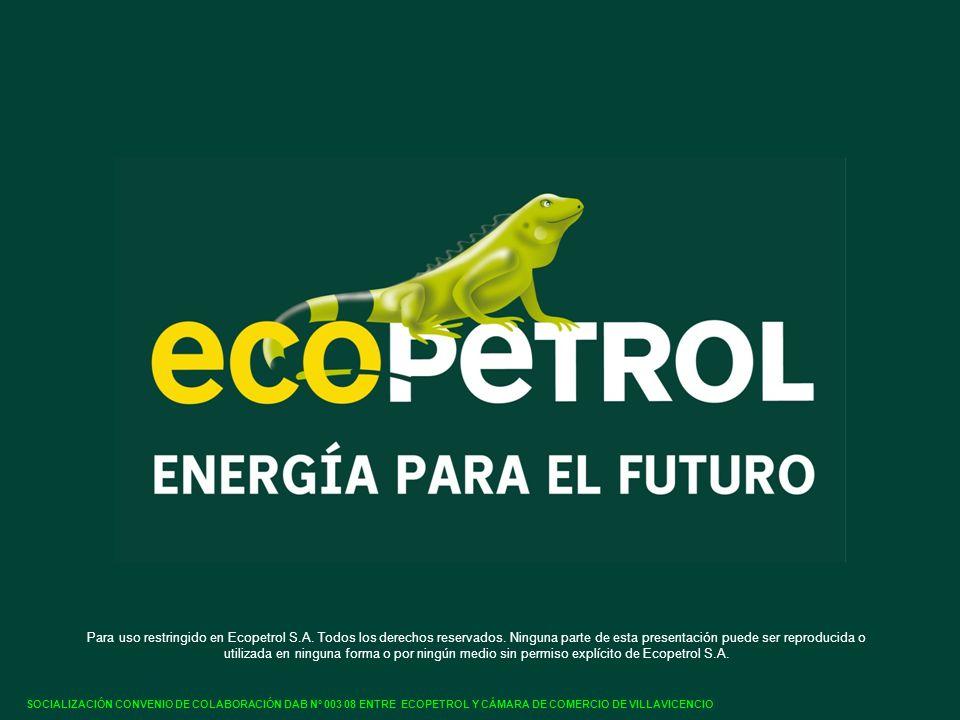Para uso restringido en Ecopetrol S.A. Todos los derechos reservados.