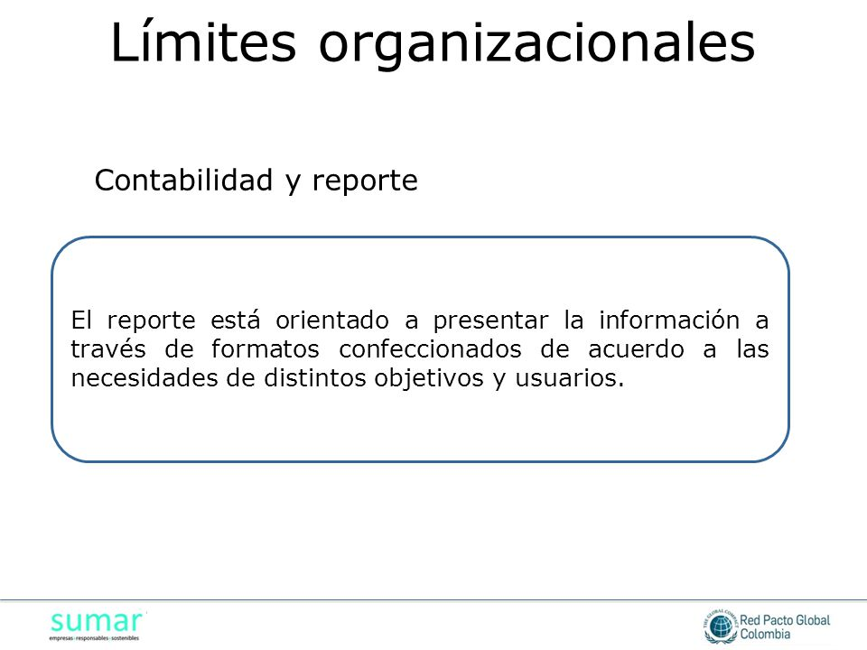 El reporte está orientado a presentar la información a través de formatos confeccionados de acuerdo a las necesidades de distintos objetivos y usuario