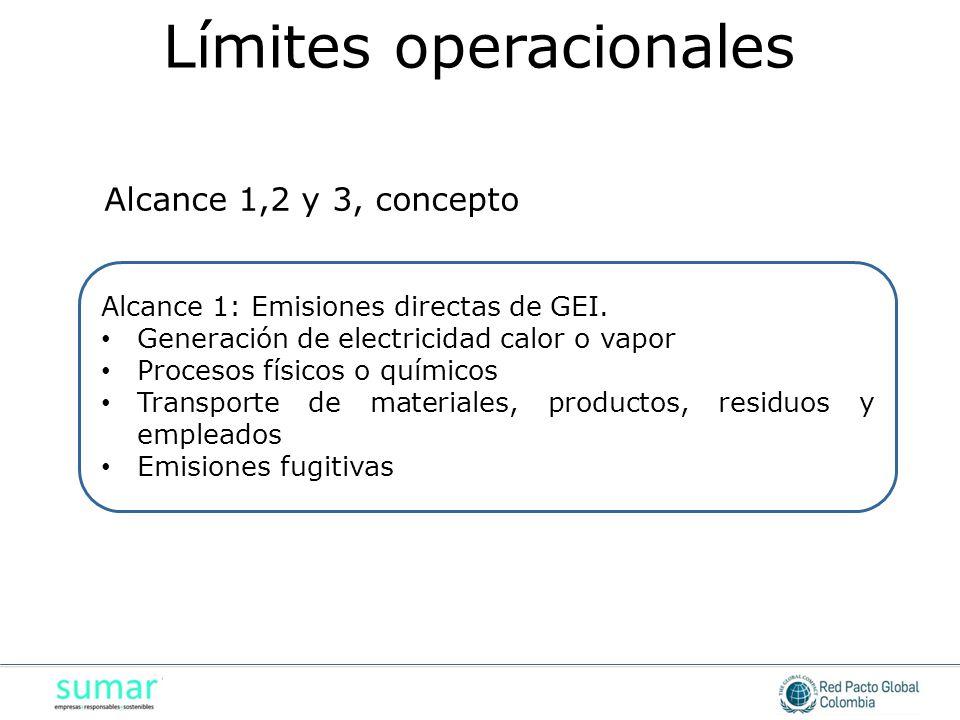 Alcance 1: Emisiones directas de GEI. Generación de electricidad calor o vapor Generación de electricidad calor o vapor Procesos físicos o químicos Pr