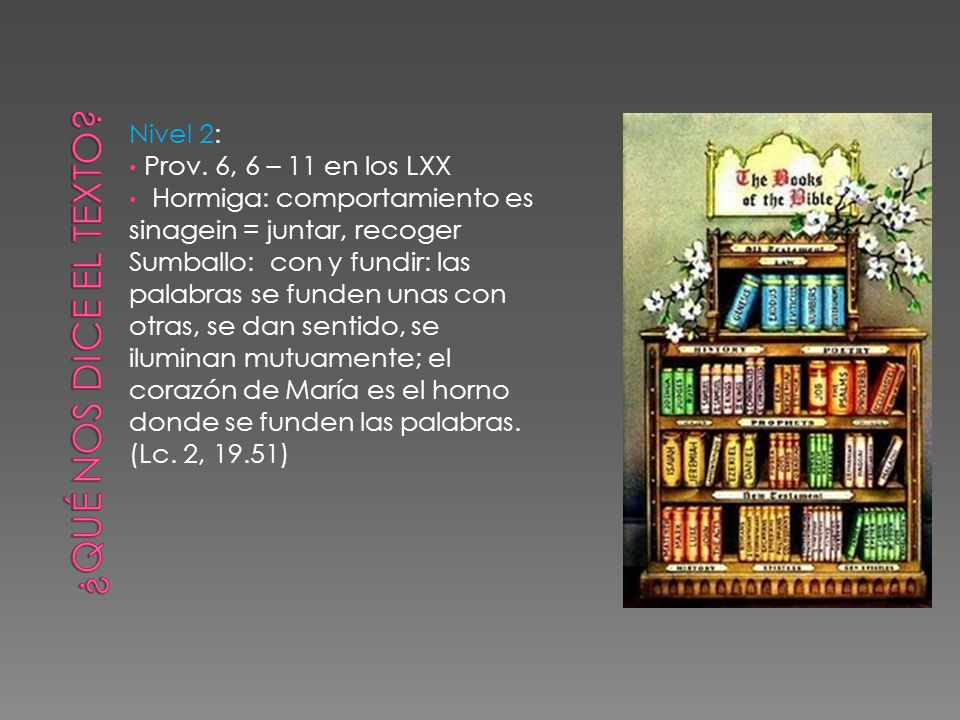 Nivel 2: Prov. 6, 6 – 11 en los LXX Hormiga: comportamiento es sinagein = juntar, recoger Sumballo: con y fundir: las palabras se funden unas con otra