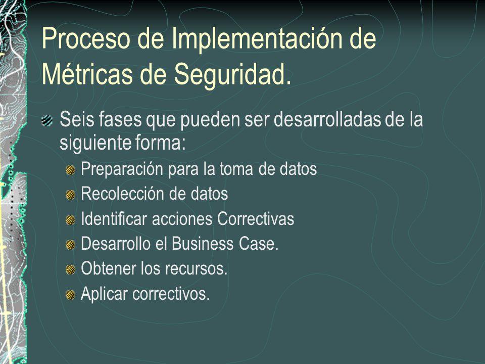 Proceso de Implementación de Métricas de Seguridad.