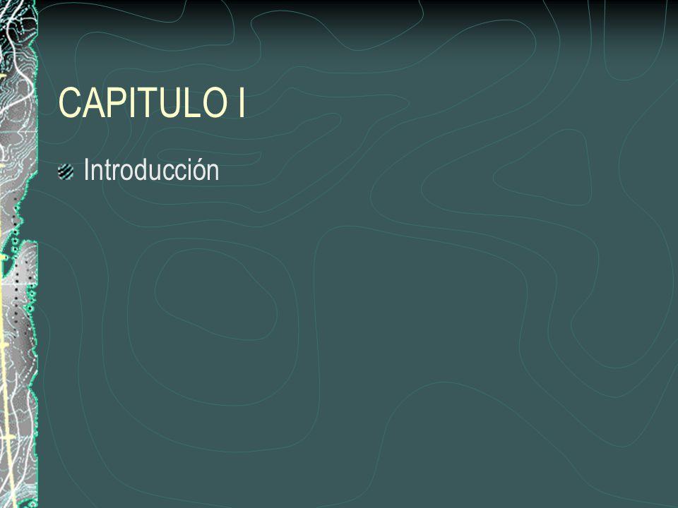 CAPITULO I Introducción