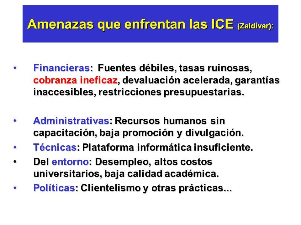 Tres problemas serios en las ICE: (Salmi, 1999) 1.Altas tasas de incumplimiento en pagos. 2.Alto subsidio en tasas de interés. 3.Altos costos administ