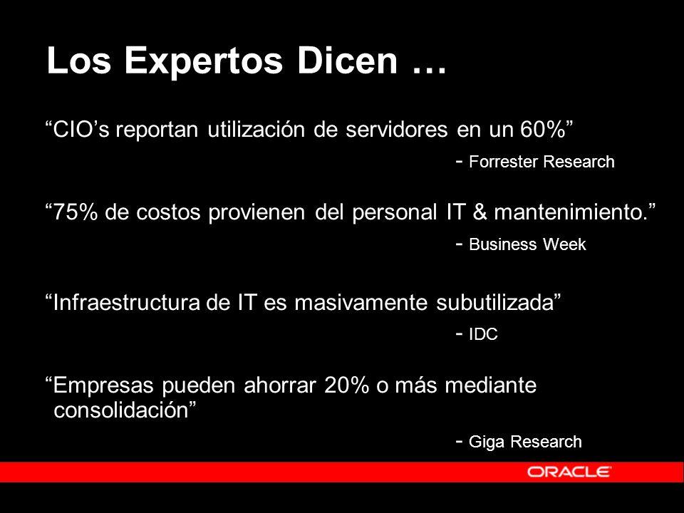 Los Expertos Dicen … CIOs reportan utilización de servidores en un 60% - Forrester Research 75% de costos provienen del personal IT & mantenimiento.