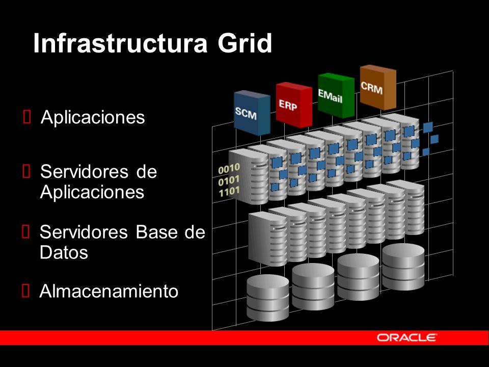 Infrastructura Grid Aplicaciones Servidores de Aplicaciones Servidores Base de Datos Almacenamiento