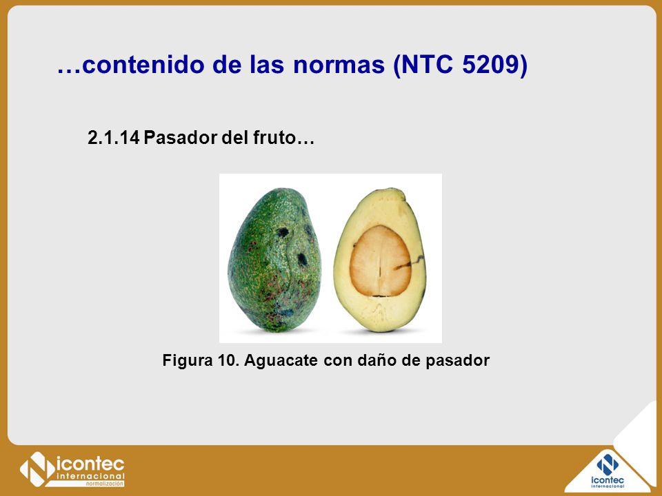 …contenido de las normas (NTC 5209) Figura 10. Aguacate con daño de pasador 2.1.14 Pasador del fruto…