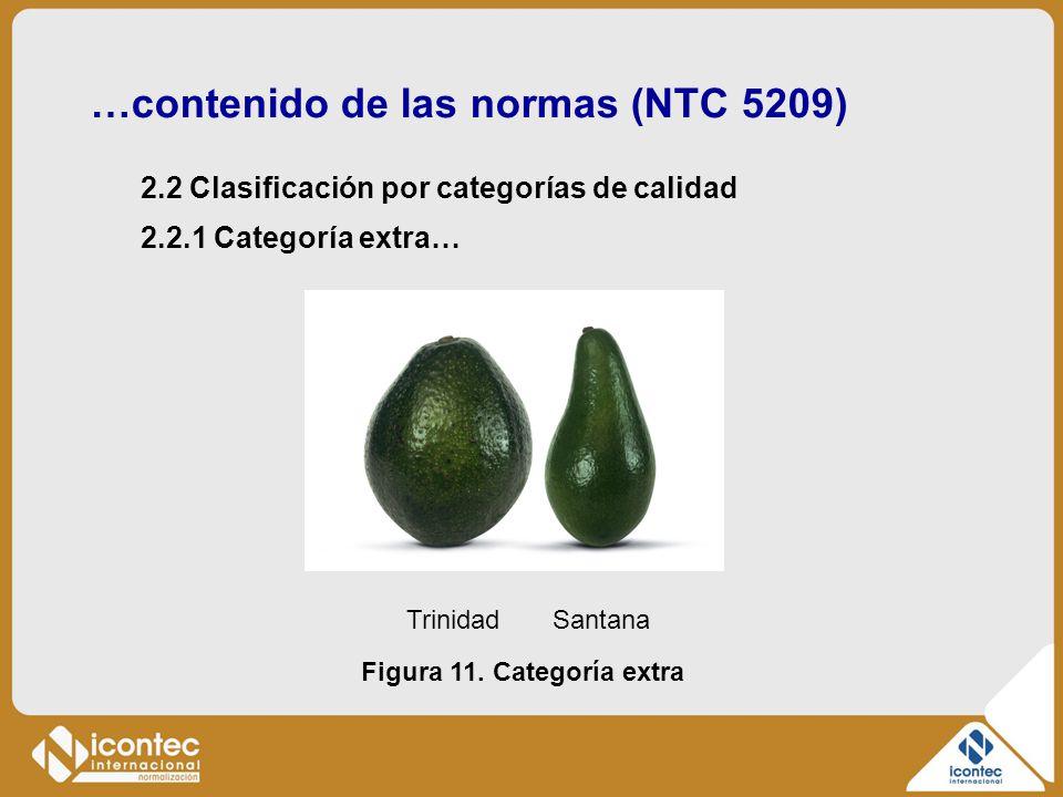 …contenido de las normas (NTC 5209) 2.2 Clasificación por categorías de calidad Figura 11. Categoría extra 2.2.1 Categoría extra… Trinidad Santana
