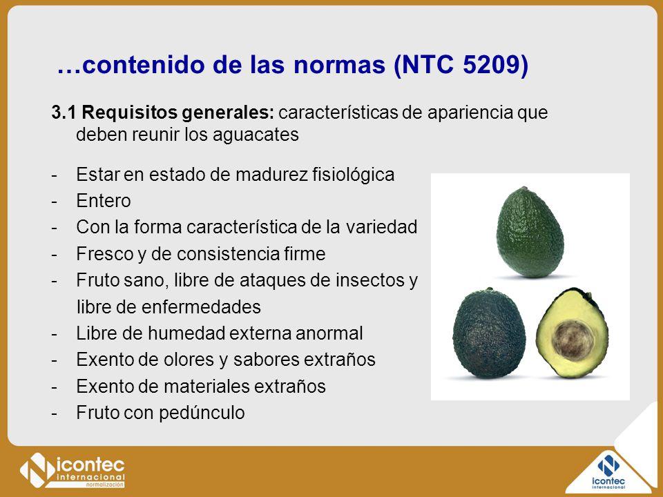 …contenido de las normas (NTC 5209) 3.1 Requisitos generales: características de apariencia que deben reunir los aguacates -Estar en estado de madurez