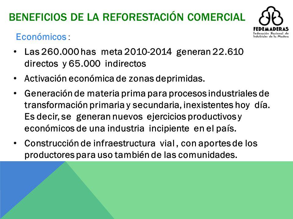 BENEFICIOS DE LA REFORESTACIÓN COMERCIAL Sociales : Es instrumento para la paz con ocupación de mano de obra en cultivos legales sustitutivos. Ofrece