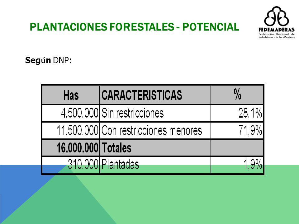 COLOMBIA FORESTAL (Has) 2009 AREASHas Bosques naturales55.612.875 Parques y á reas protegidas 10.069.420 Reservas ind í genas 31.100.000 Titulaci ó n