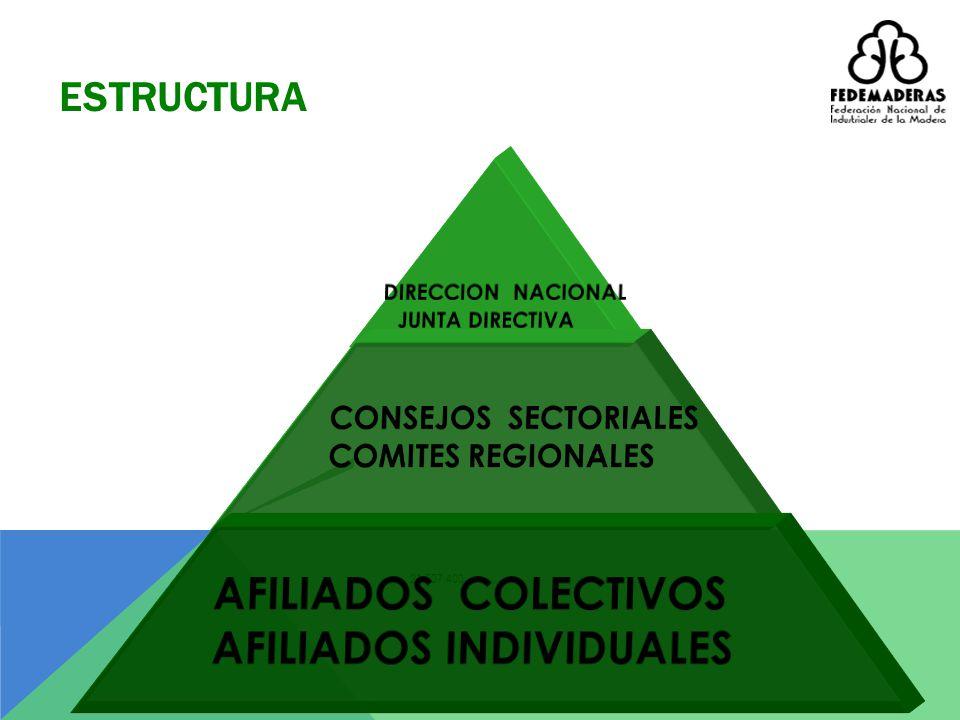 C° BOSQUE PLANTADO TRANSFORMACION MUEBLES PRODUCTOS PROVEEDORES LA CADENA PRODUCTIVA BOSQUE NATURAL